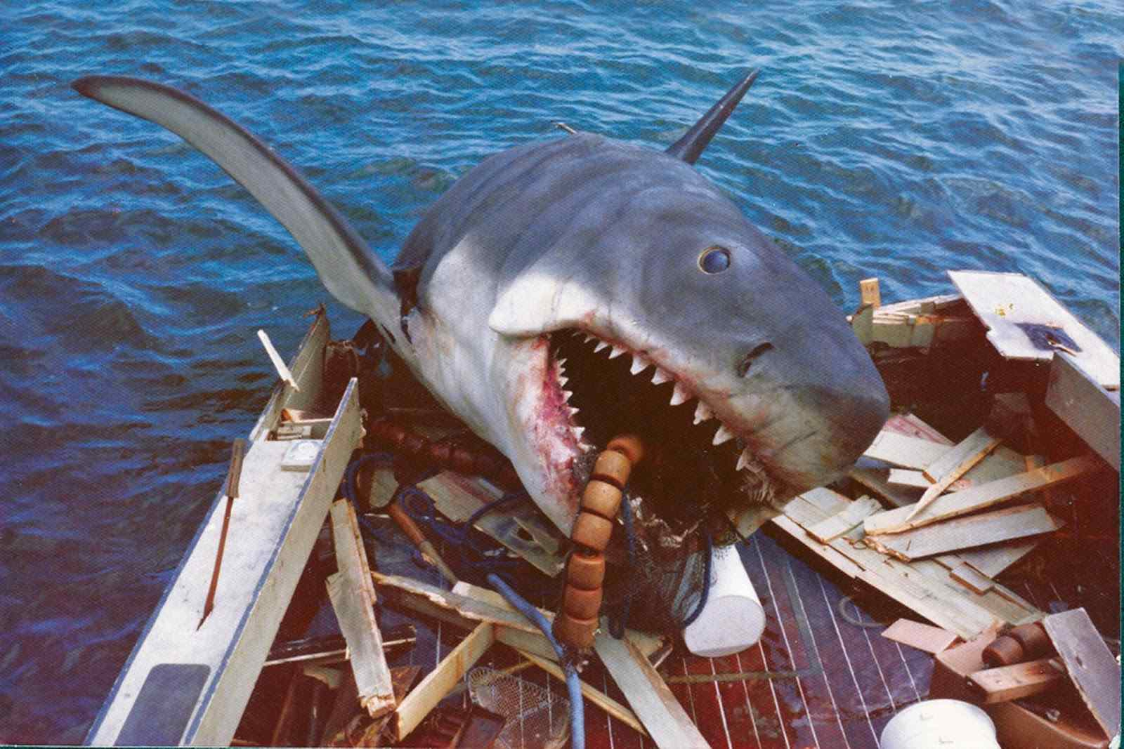The movie poster for Jaws directed by Steven Spielberg.