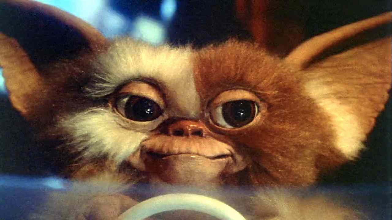 Gizmo, the original Mogwai in the Joe Dante directed horror-comedy Gremlins.
