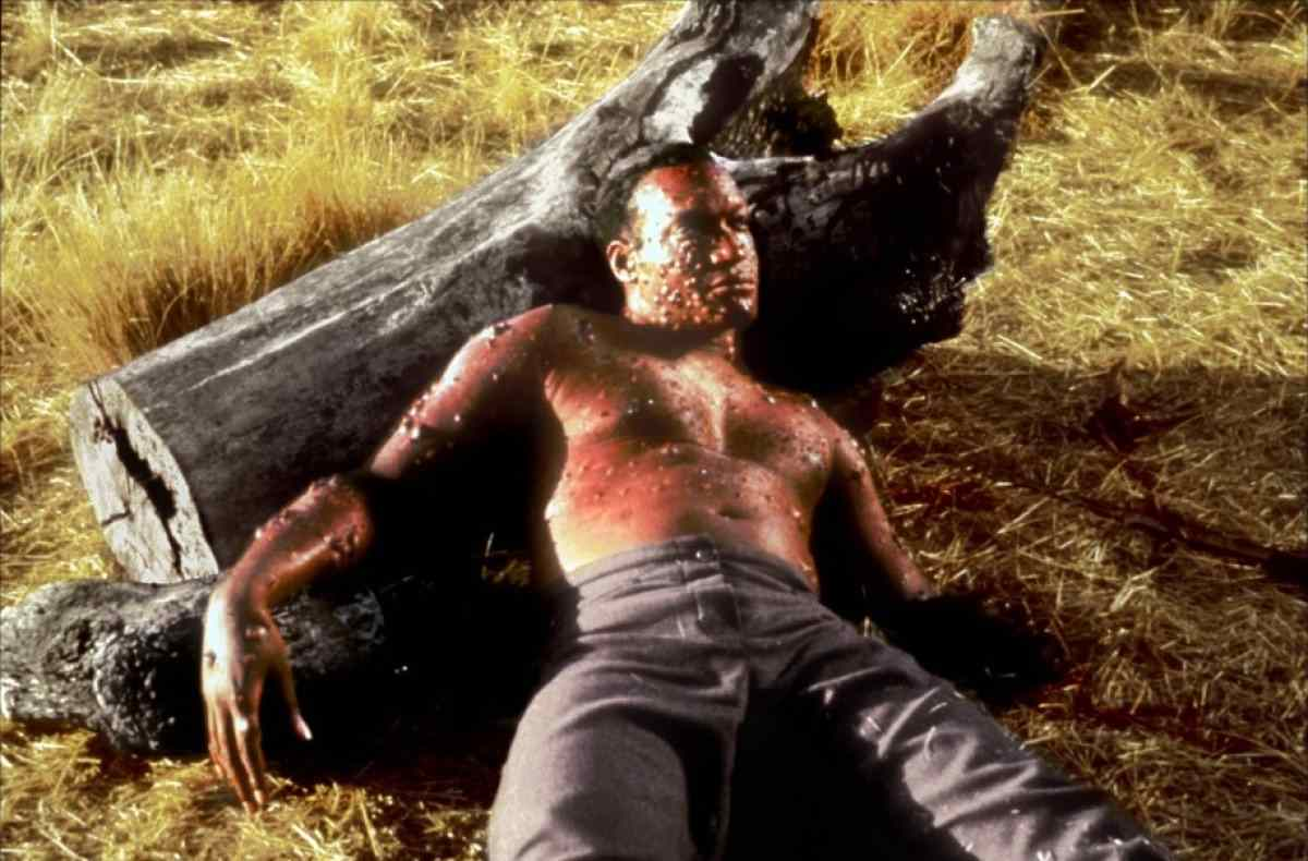 Candyman played by Tony Todd in the famous Candyman movie directed by Bernard Rose.