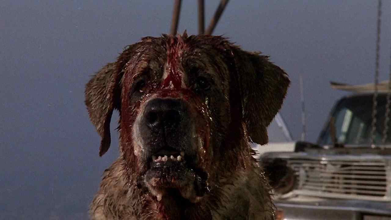 Cujo the dog in the movie of the same name.