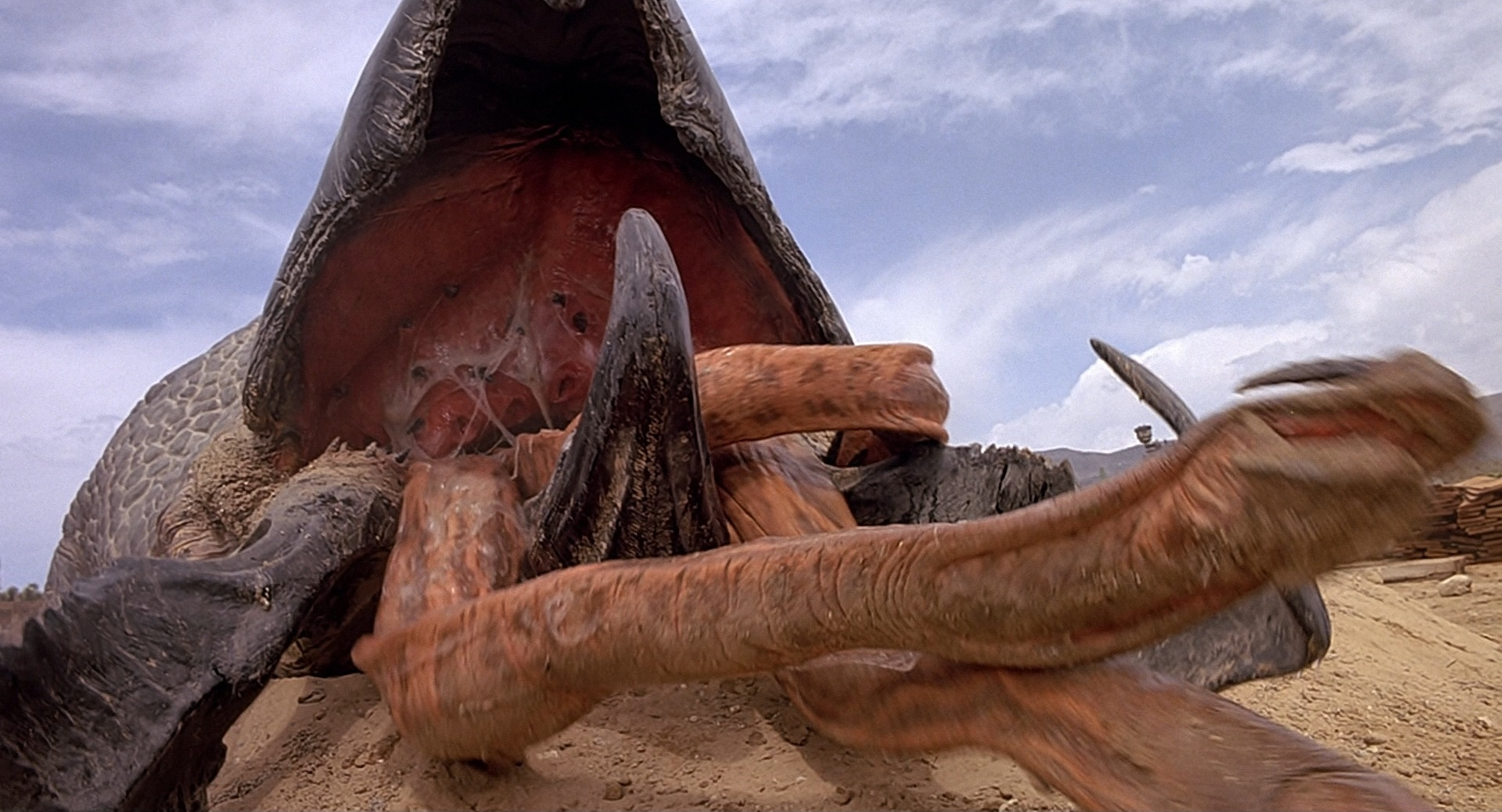 In the popular 1990 creature feature Tremors, the creature in question was a large underground worm called a Graboid.