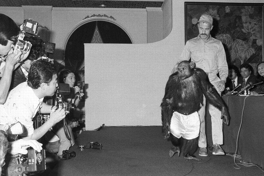 Oliver the humanzee from unsolved mysteries