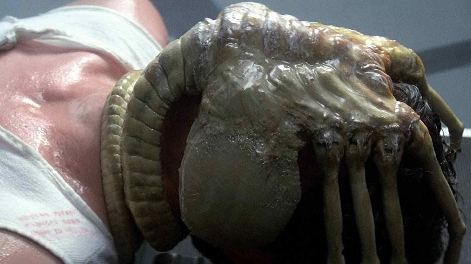 A face hugger in the Ridley Scott horror film Alien.