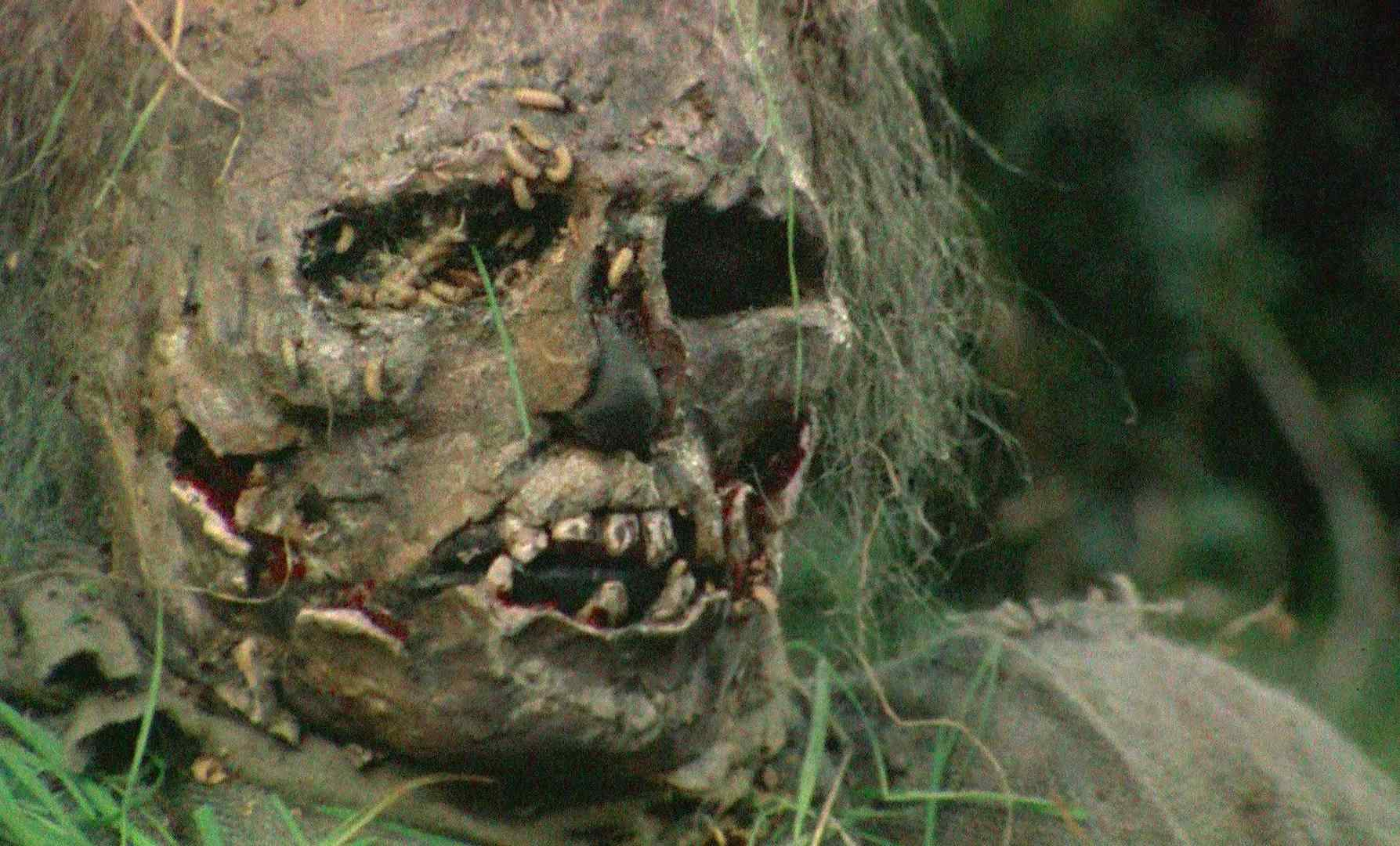 A skeleton from the Andrea Bianchi zombie horror film Burial Ground: Nights of Terror.