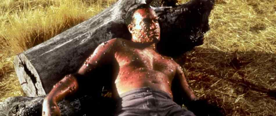 Origins of Candyman in Candyman 2: Farewell to the Flesh