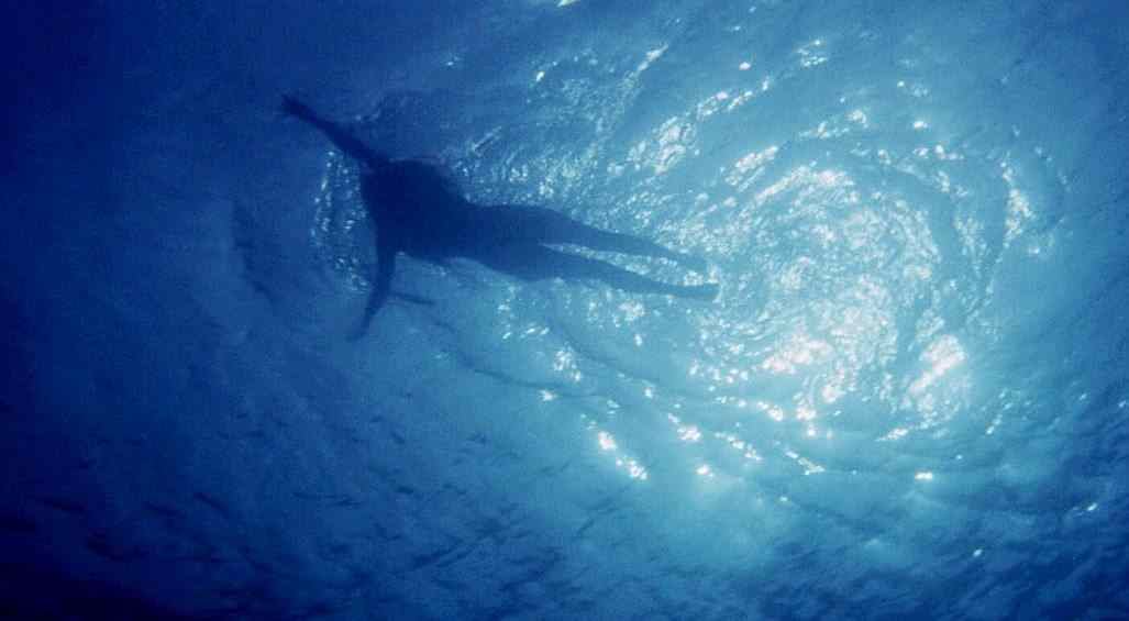 Underwater shot in Jaws