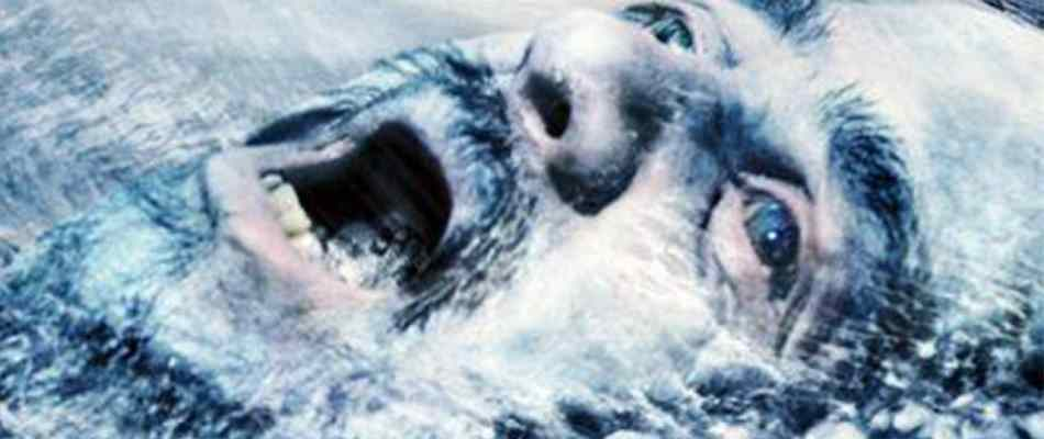 Looking cold on the poster of the 2014 film Age of Ice.