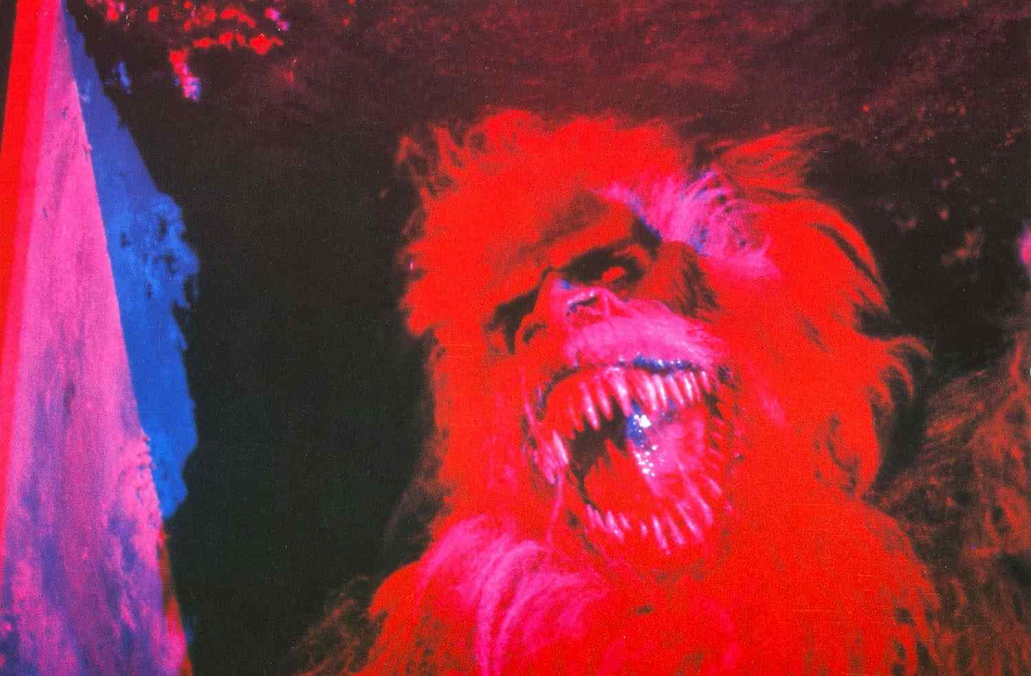 Fluffy in Creepshow 1982