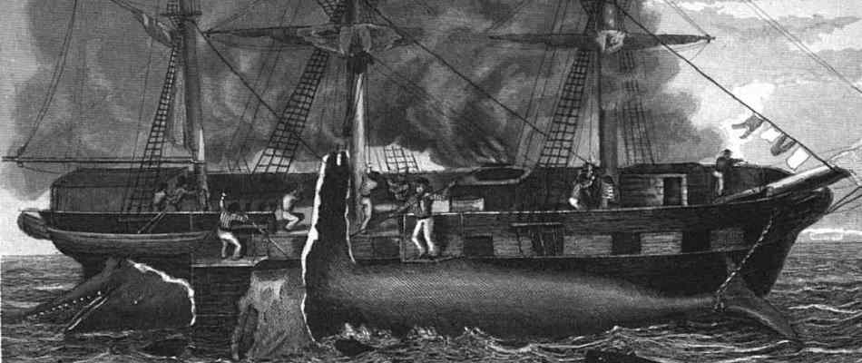 Vintage etching of a whaling ship
