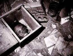 mary hogans head in a wooden box.