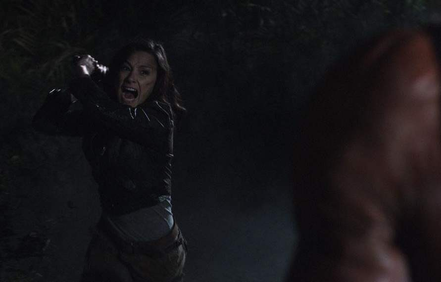 Marybeth (Danielle Harris) attacks Victor Crowley with his own hatchet in Hatchet II.
