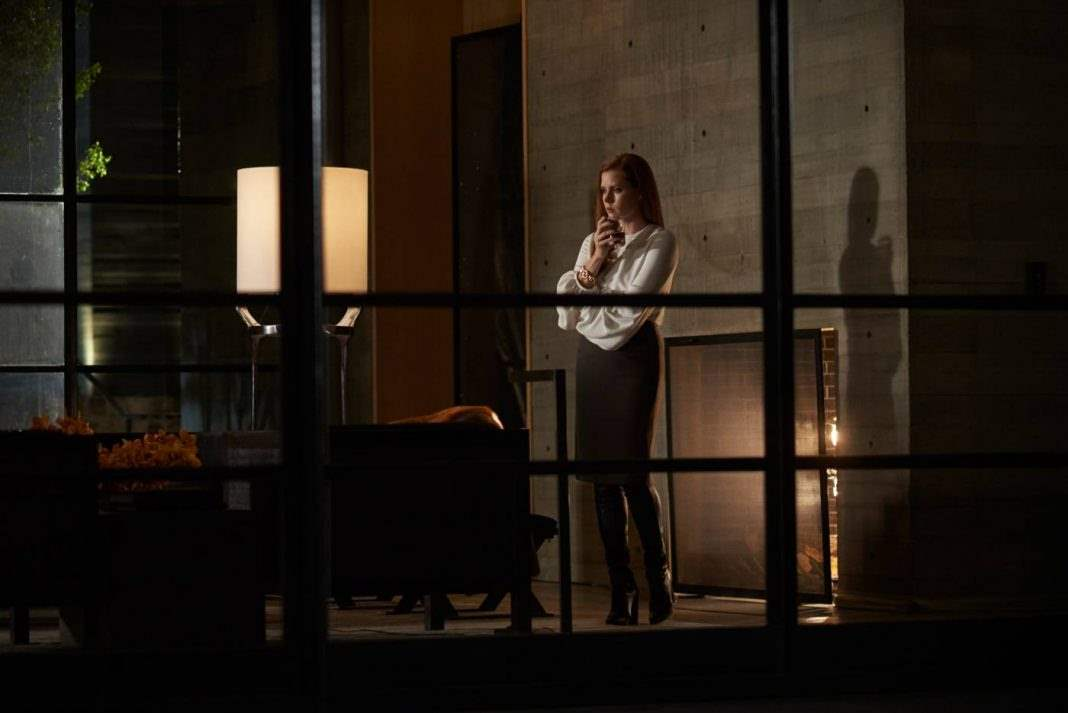 Amy Adams in Nocturnal Animals wine