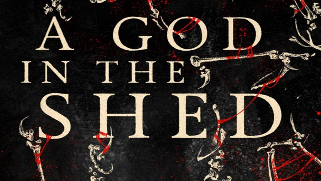 Book cover for A God in the Shed by J-F. Dubeau